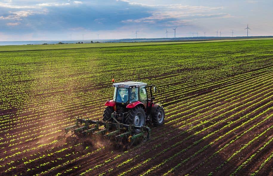 L'entreprise controversée procède toujours de la même façon : elle achète des terres et s'associe à des agriculteurs locaux pour créer une société de production agricole.