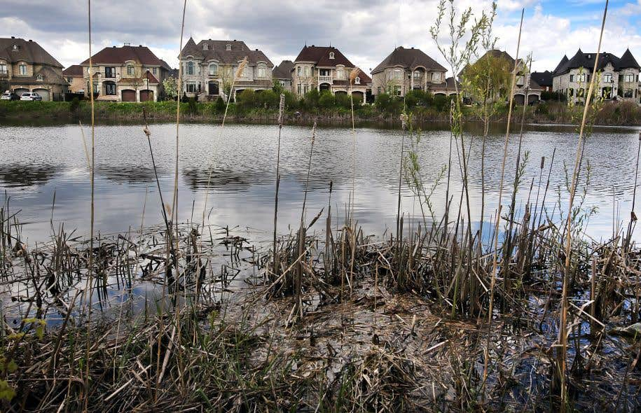 Pierrefonds-Ouest, comme plusieurs secteurs résidentiels au Québec, a été durement touché par les inondations des derniers jours.