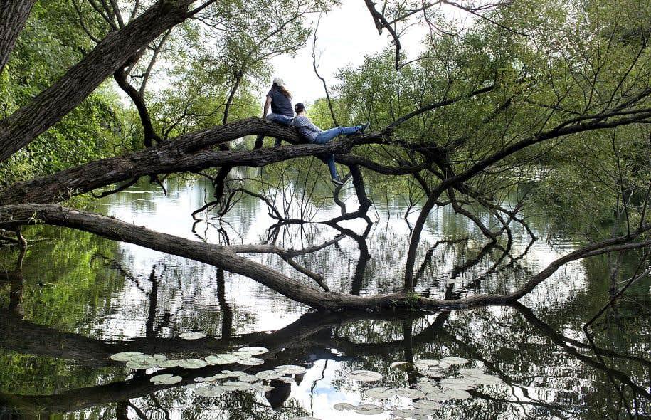 «L'idée de nature est particulièrement abstraite et conceptualisée par la société occidentale», estime Marie-Hélène Parizeau.