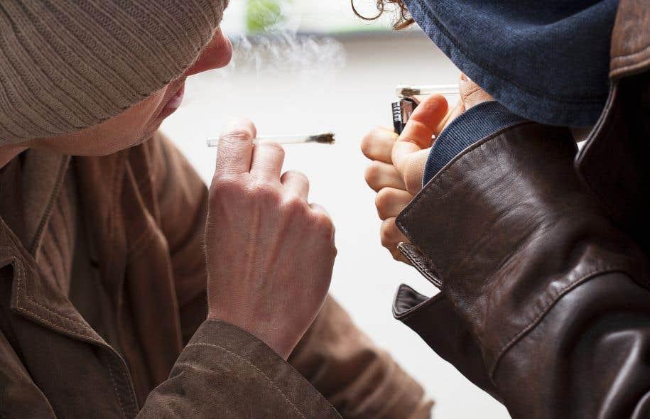 Des experts pour aiguiller Québec — Légalisation du pot