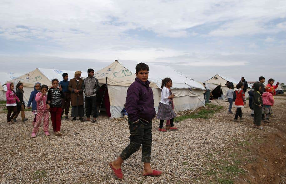 Irak: intoxication alimentaire massive dans un camp de déplacés