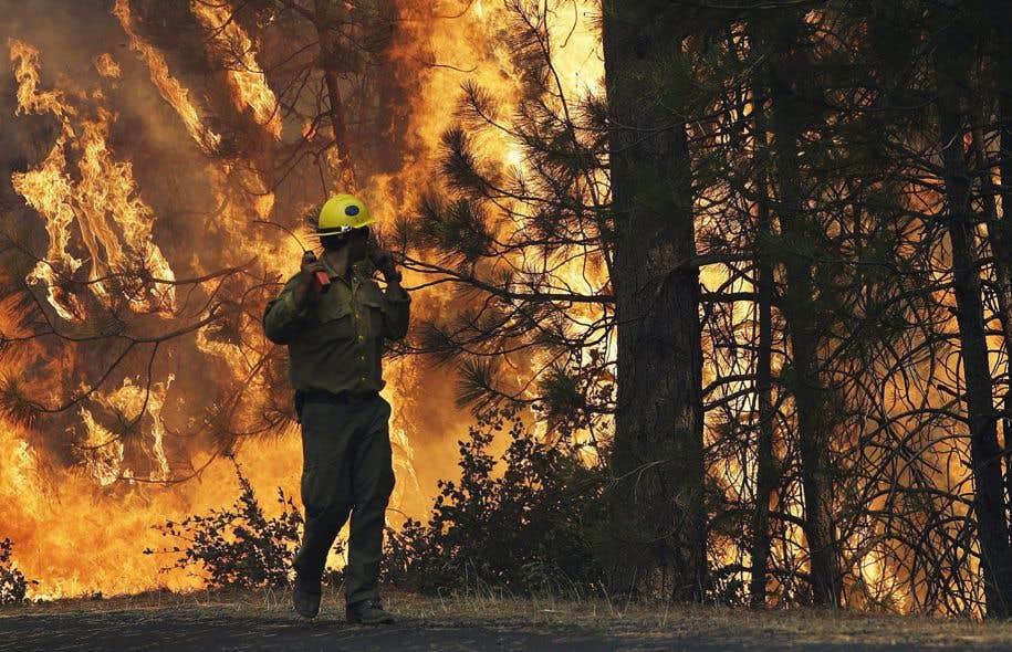Des pompiers tentent de maîtriser les flammes, près du parc Yosemite, en Californie.