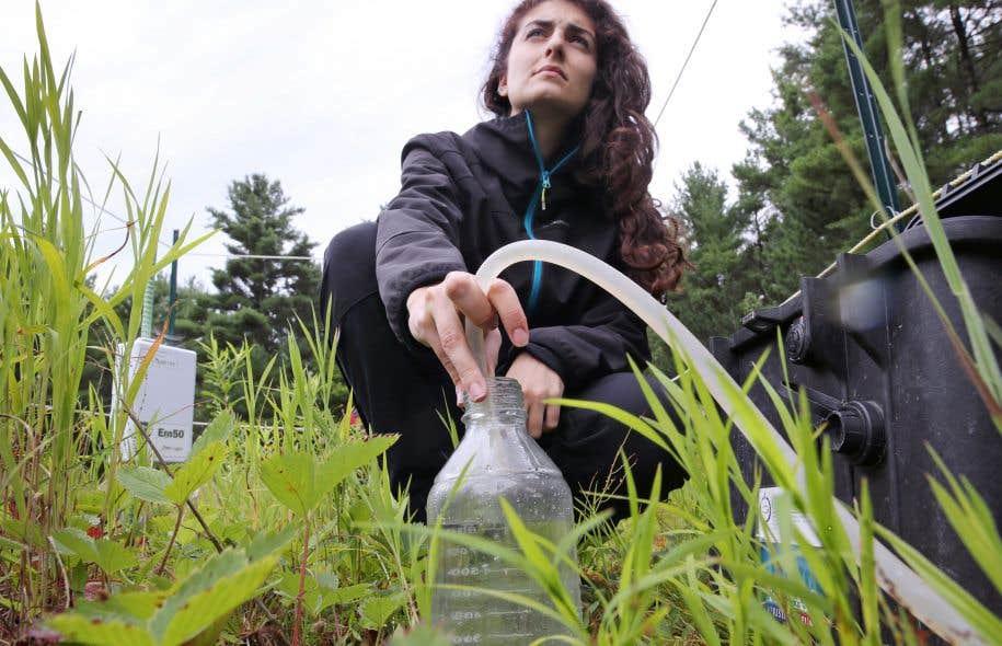 Alexandra Mattéï pompe l'eau d'un lysimètre dans la Pinière de Saint-Lazare.