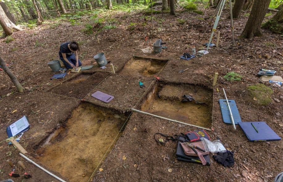 Le site a été découpé à la manière d'un damier. Carré par carré, les étudiants creusent délicatement le contenu du sol avec de modestes truelles.