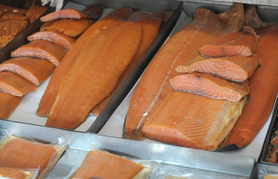 Le saumon transgénique conçu par AquaBounty contient un gène d'hormone de croissance qui lui permet de grossir plus rapidement que les autres saumons.