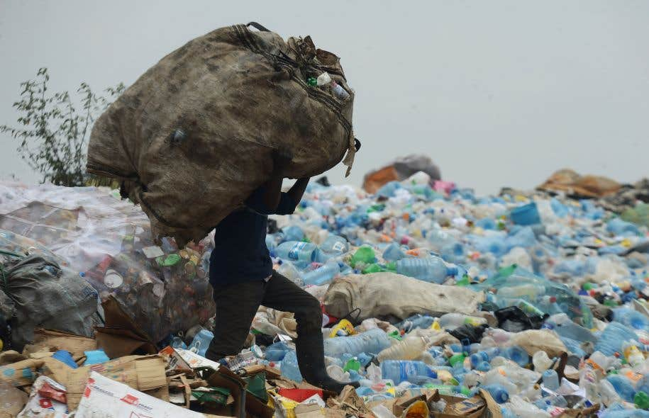 Selon les Nations unies, les supermarchés kényans distribuent jusqu'à 100 millions de sacs en plastique par an.