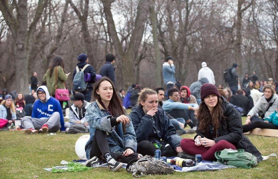 Rassemblement au pied du mont Royal, en avril dernier, en faveur de la légalisation de la marijuana. Des chercheurs tentent de trouver des moyens de contrer les effets délétères du «pot» chez les jeunes consommateurs.