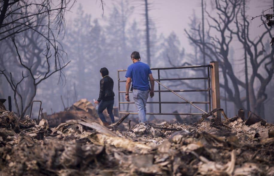 Au moins 1500 maisons ont brûlé et 11 personnes ont été tuées lors des incendies en Californie en octobre dernier.