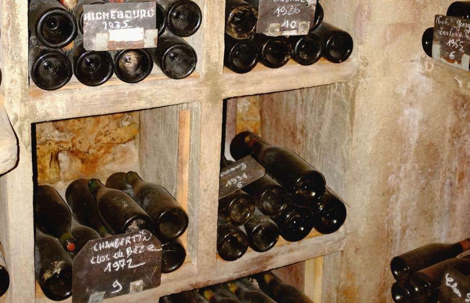 Cave À Vin Ou… Cimetière À Bouteilles? | Le Devoir