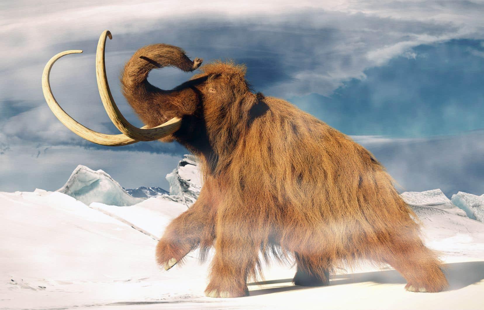Représentation artistique d'un mammouth laineux