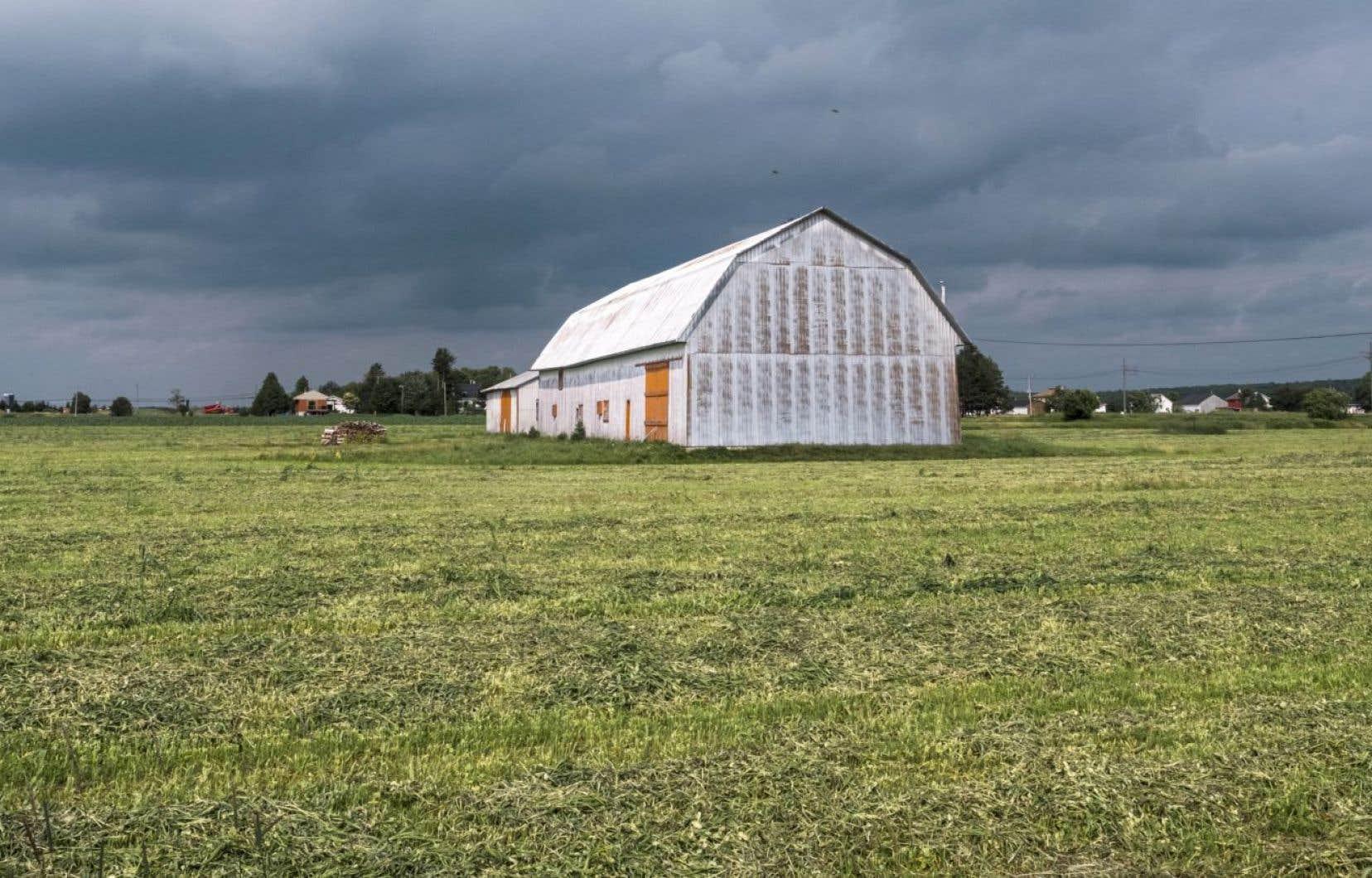 Le gouvernement souhaite resserer l'encadrement autour de l'utilisation des pesticides dans les fermes québécoises.