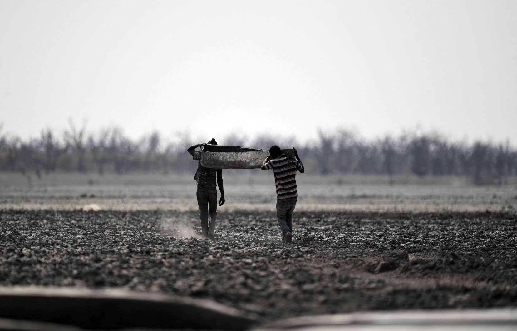 Des tendances dans les précipitations et les évolutions de température en Afrique pourraient être liées au changement climatique, mais les études documentant le phénomène sur le continent sont peu nombreuses, reflet de la disproportion du nombre d'études entre les pays riches et les pays pauvres.