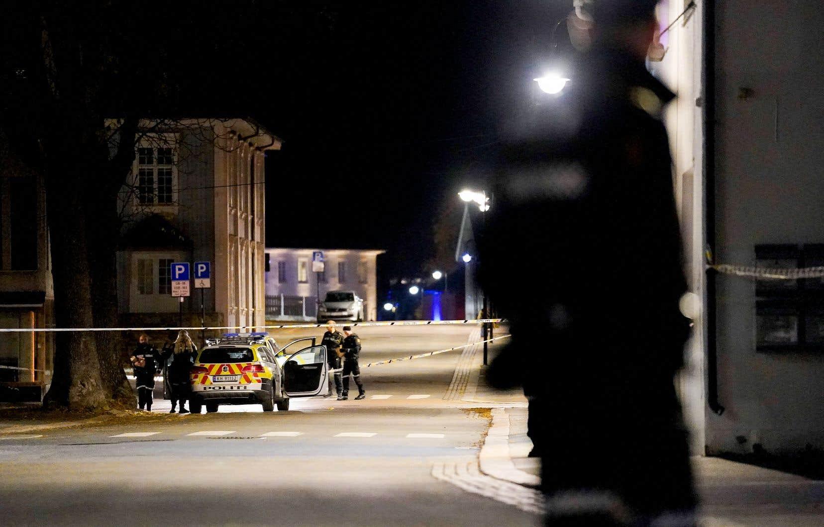 La direction norvégienne de la police a décrété que les policiers, qui ne sont généralement pas armés, porteraient des armes à titre temporaire dans tout le pays.