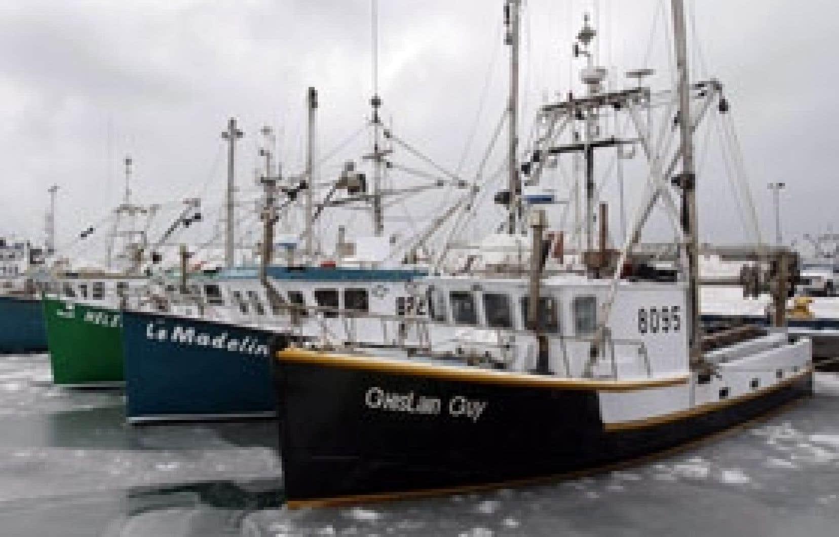 Plusieurs bateaux sont rentrés au port de Cap-aux-Meules. Certains marins étaient visiblement attristés par la mort de leurs camarades, alors que d'autres étaient furieux.