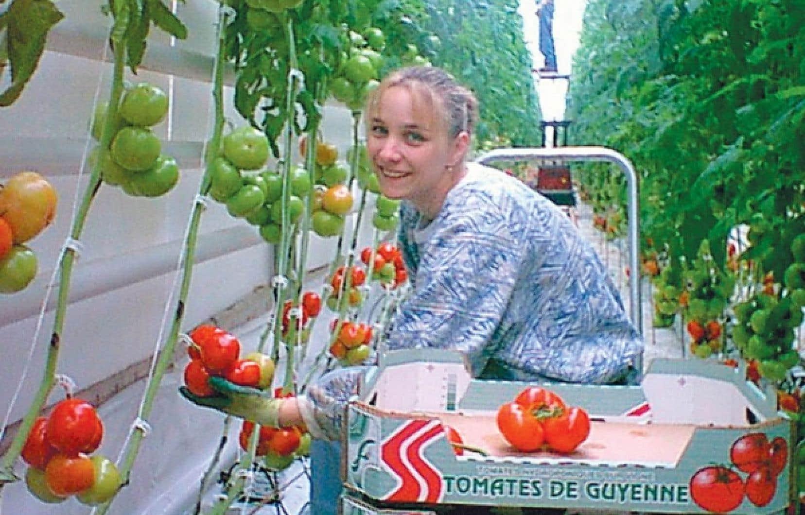 Les coopératives agroalimentaires arrivent au deuxième rang pour la création d'emplois.