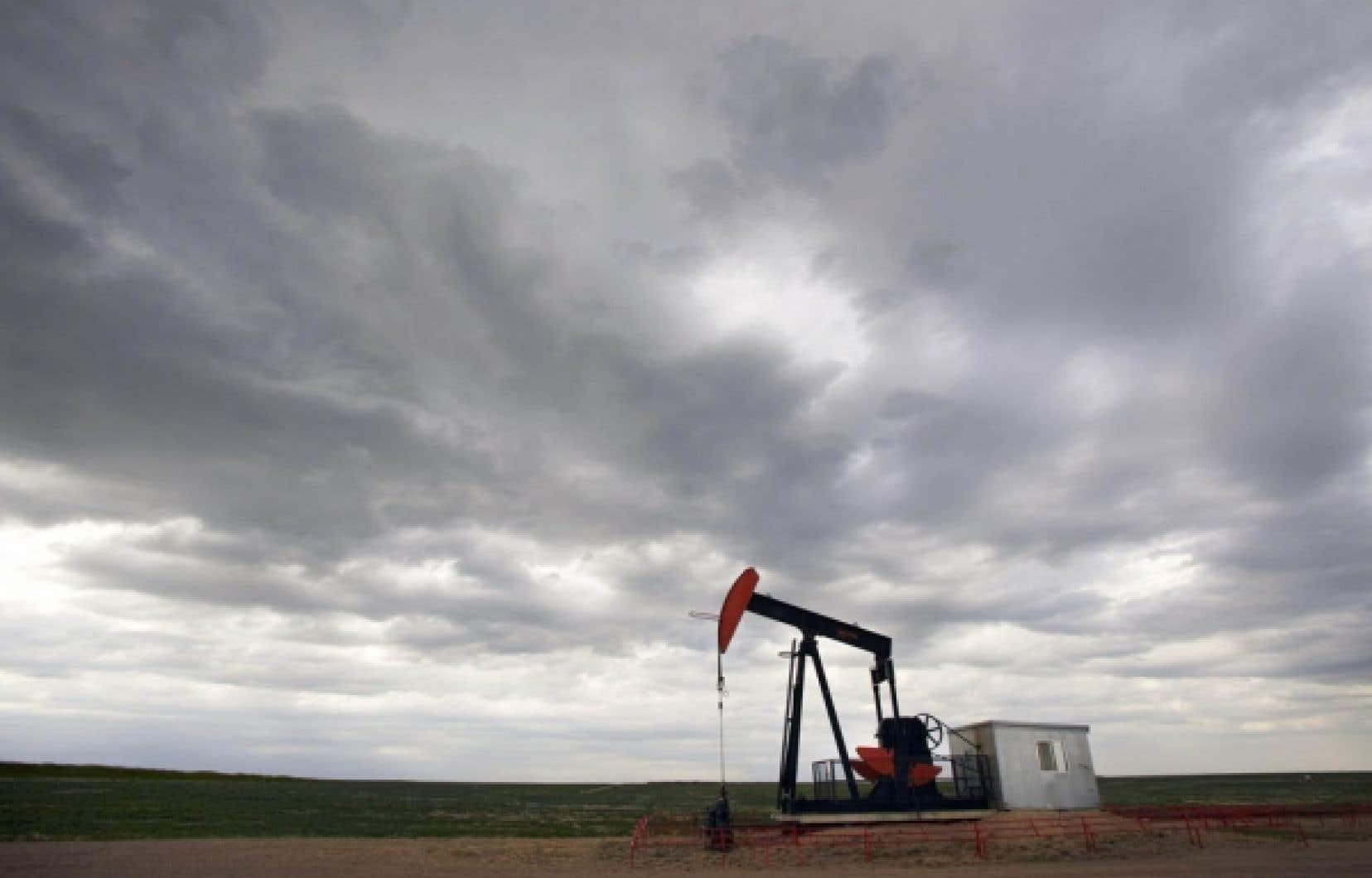 Beaucoup ont vu dans le fait d'édenter la Loi canadienne sur l'évaluation environnementale (LCEE) une génuflexion devant l'industrie pétrolière.