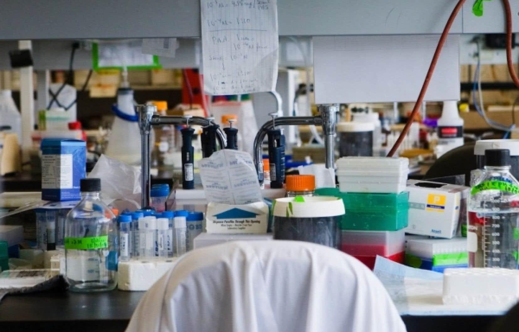 Ottawa abolit le soutien à la recherche fondamentale et annonce une baisse du crédit d'impôt pour la recherche et développement (R-D).