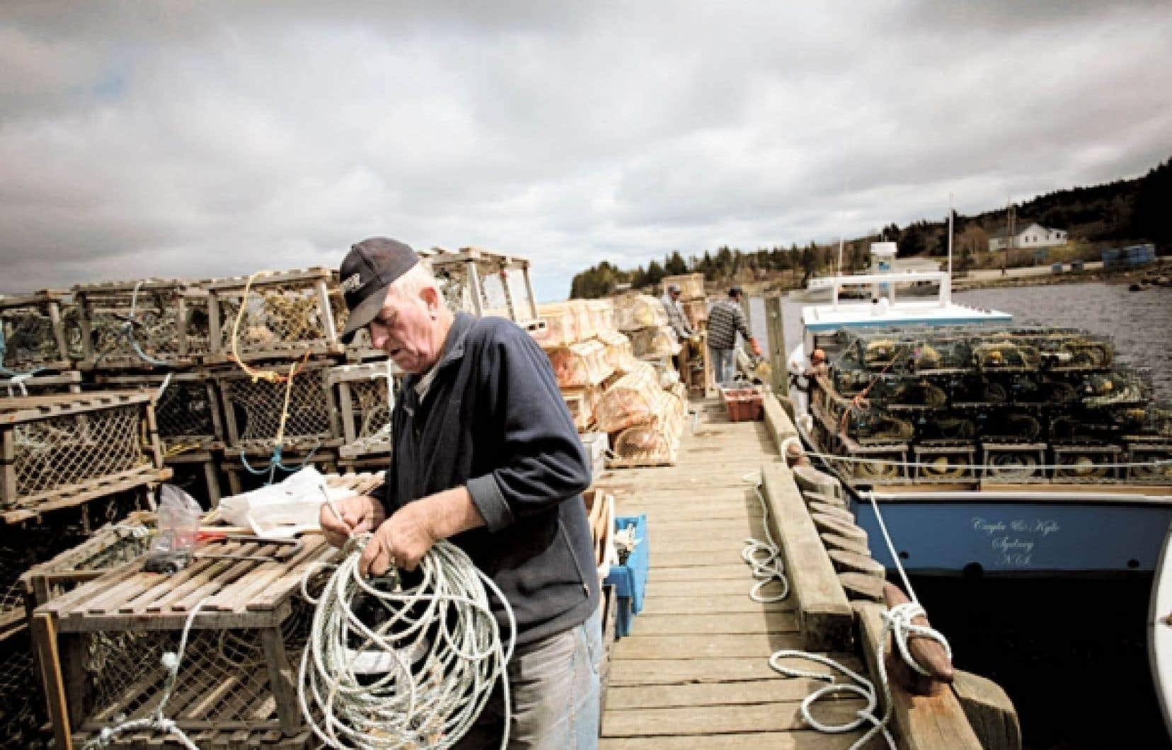 <div> Des pêcheurs de homards en Nouvelle-Écosse. Le gouvernement fédéral s'apprête à affaiblir la Loi sur les pêches, dénonce le Parti vert.</div>