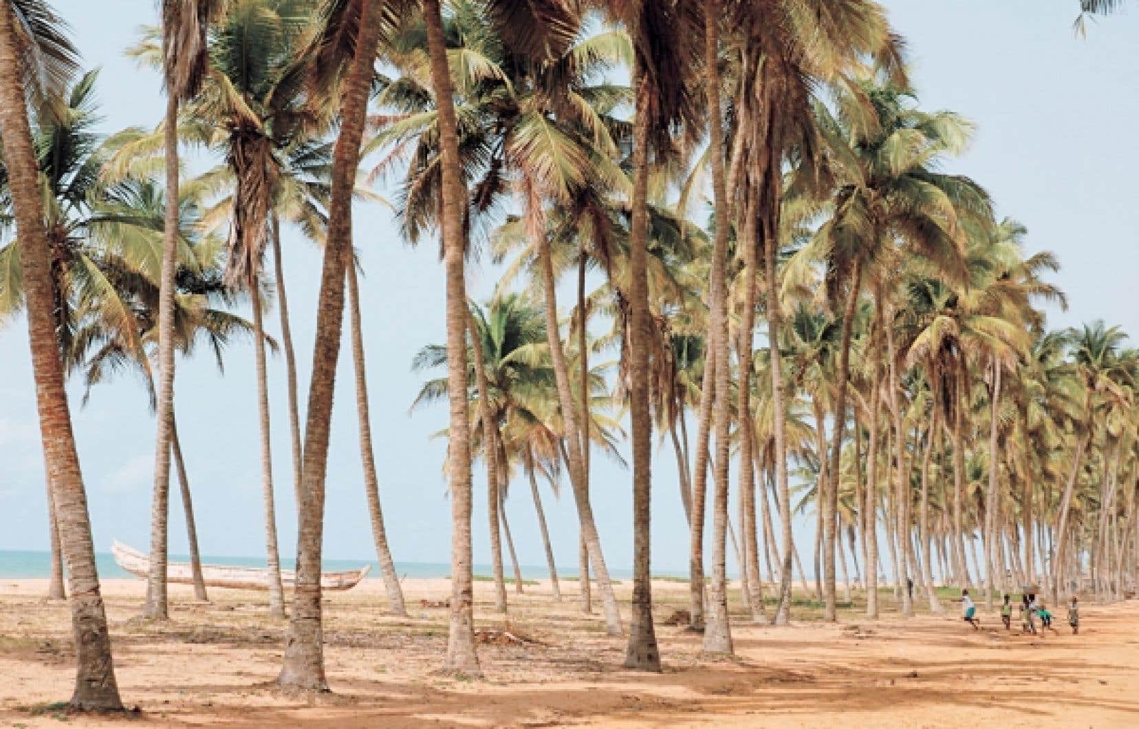 La Route des pêches est une splendide piste de sable jalonnée de hameaux de pêcheurs qui borde la mer sur 50 kilomètres depuis Cotonou.