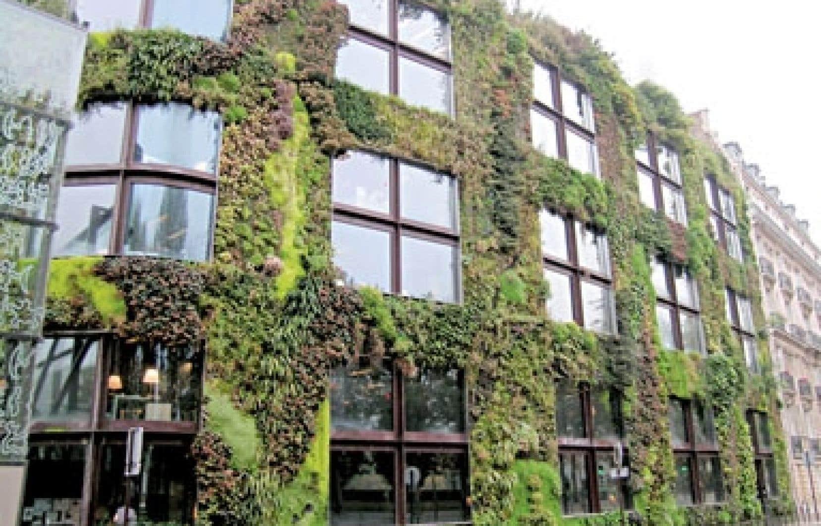 Au Québec, les murs végétaux sont au stade expérimental, car notre climat est malheureusement une contrainte importante. Sur notre photo, l'impressionnant mur végétal du Musée du quai Branly, à Paris, réalisé par Patrick Blanc.
