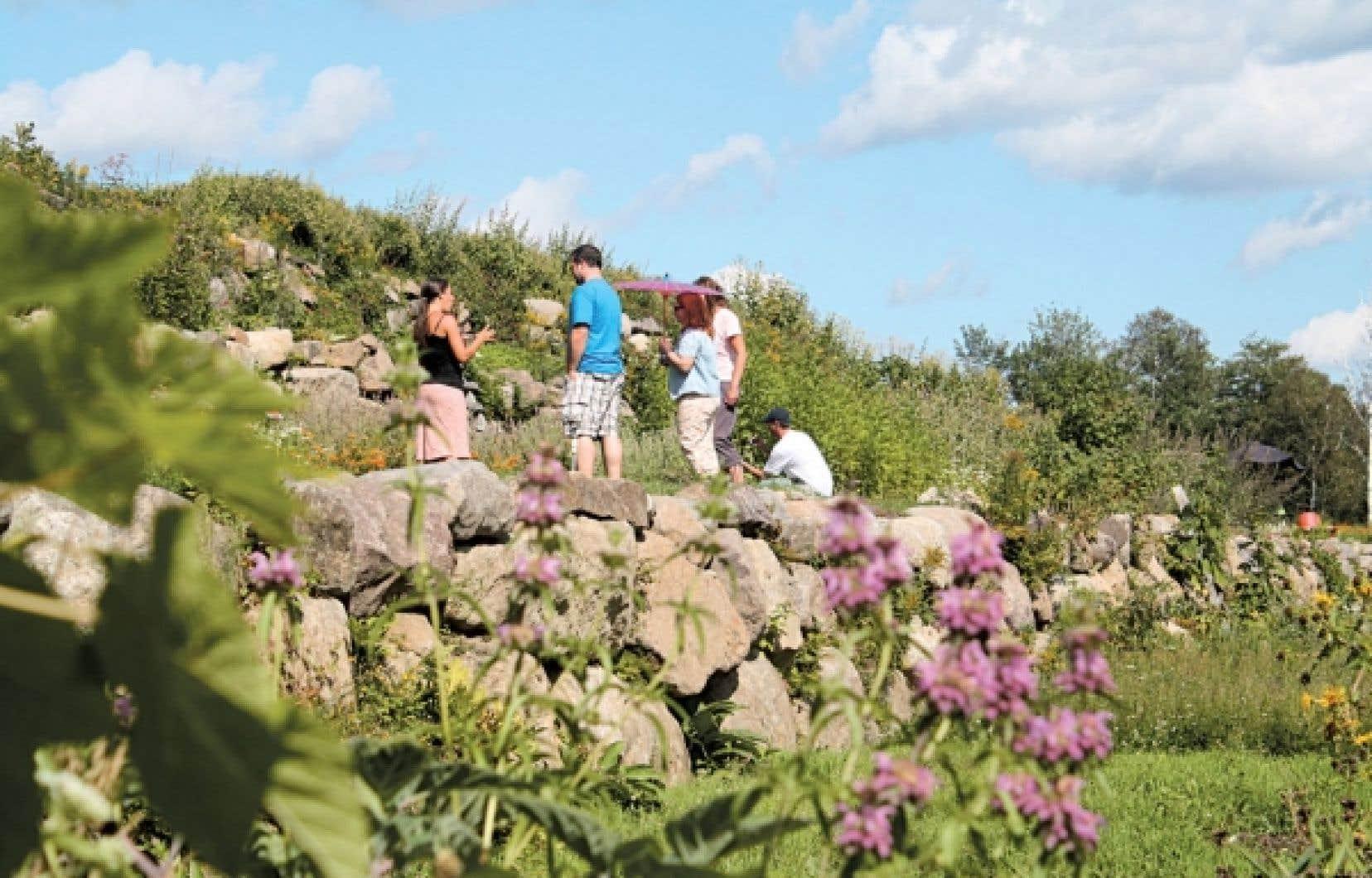 Une visite guidée des jardins de plantes médicinales de la Clef des champs permet d'apprendre un tas de trucs sur la culture de ces végétaux, sur leurs différents usages et sur leurs effets.