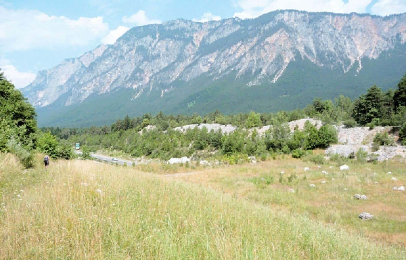 <div> C'est par ce pont de près de 100 mètres de largeur que les ours et les loups franchissent désormais l'autoroute de la ville de Drobratsh, en Autriche, pour aller repeupler les Alpes. Construit sans interrompre la circulation, ce « pont » a été totalement renaturalisé pour mieux rassurer les grands prédateurs dont on veut faciliter la réinsertion dans les Alpes.</div>