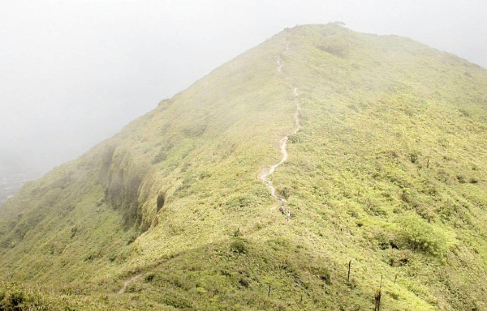En route vers le sommet de la montagne Pelée, dans le brouillard.