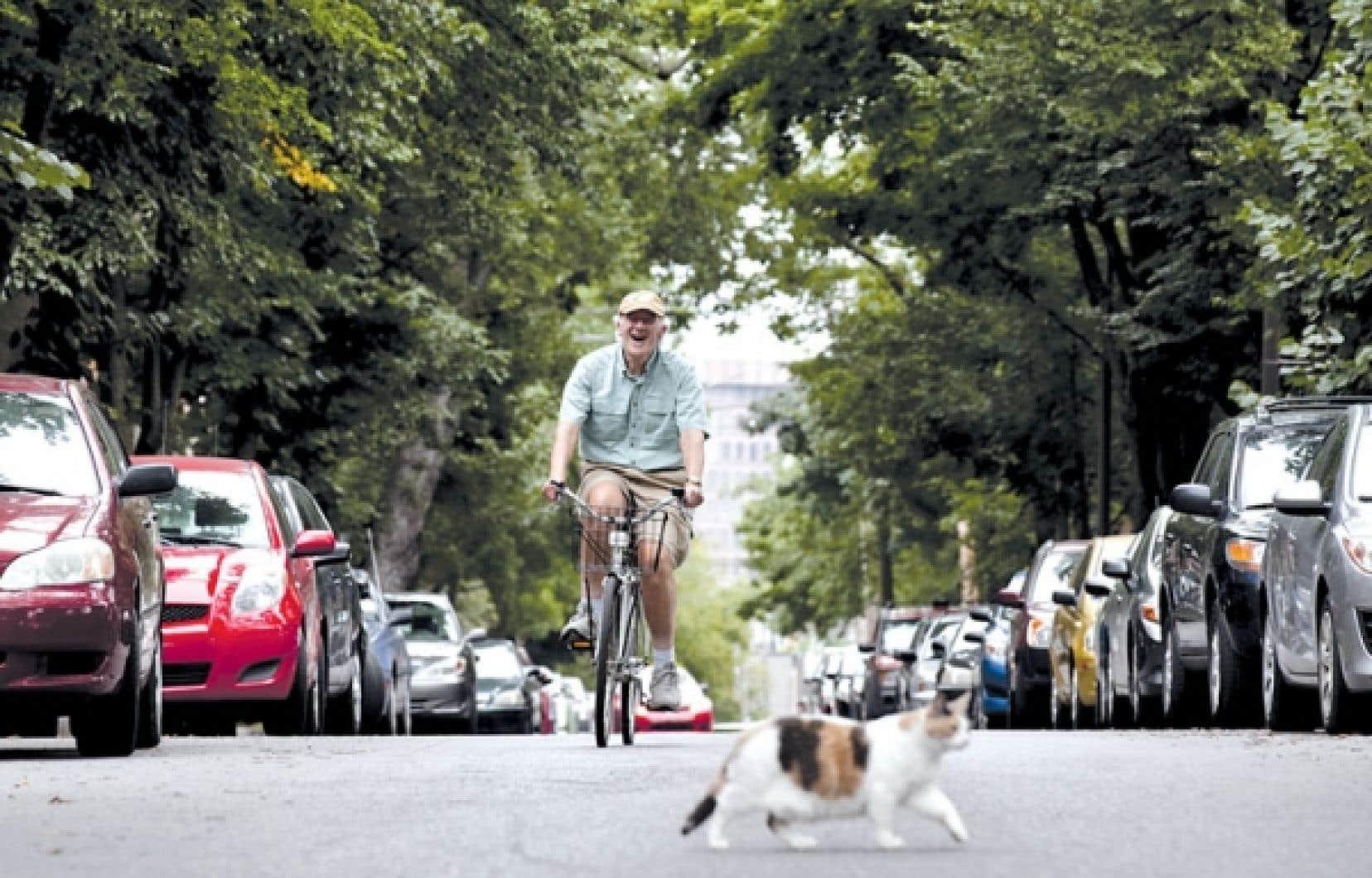 <div> Le chercheur américain John Pucher en promenade à bicyclette dans les rues de Québec.</div>