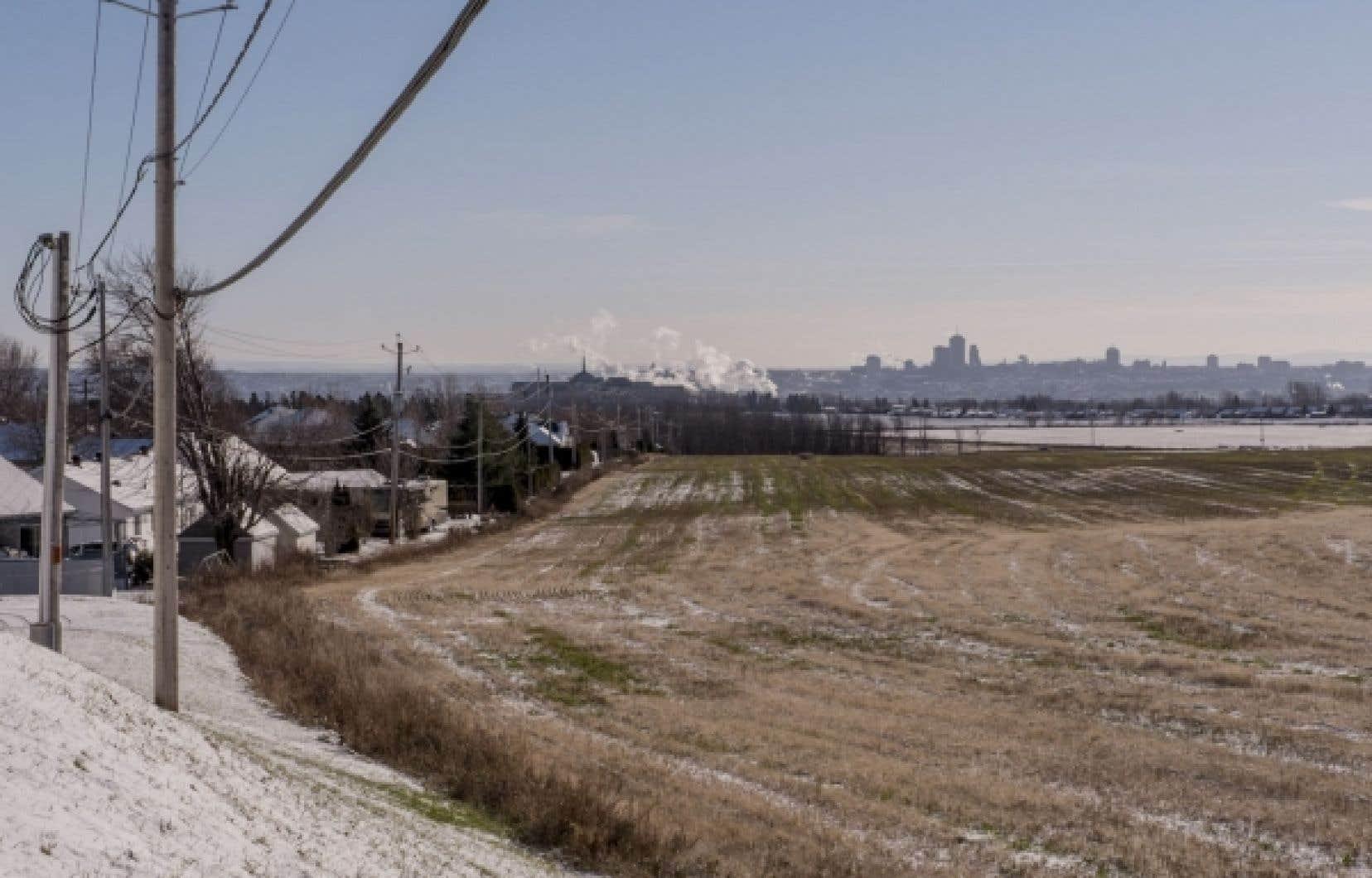 Les terres agricoles des Sœurs de la Charité de Québec, dans l'arrondissement de Beauport, couvrent 200 hectares.