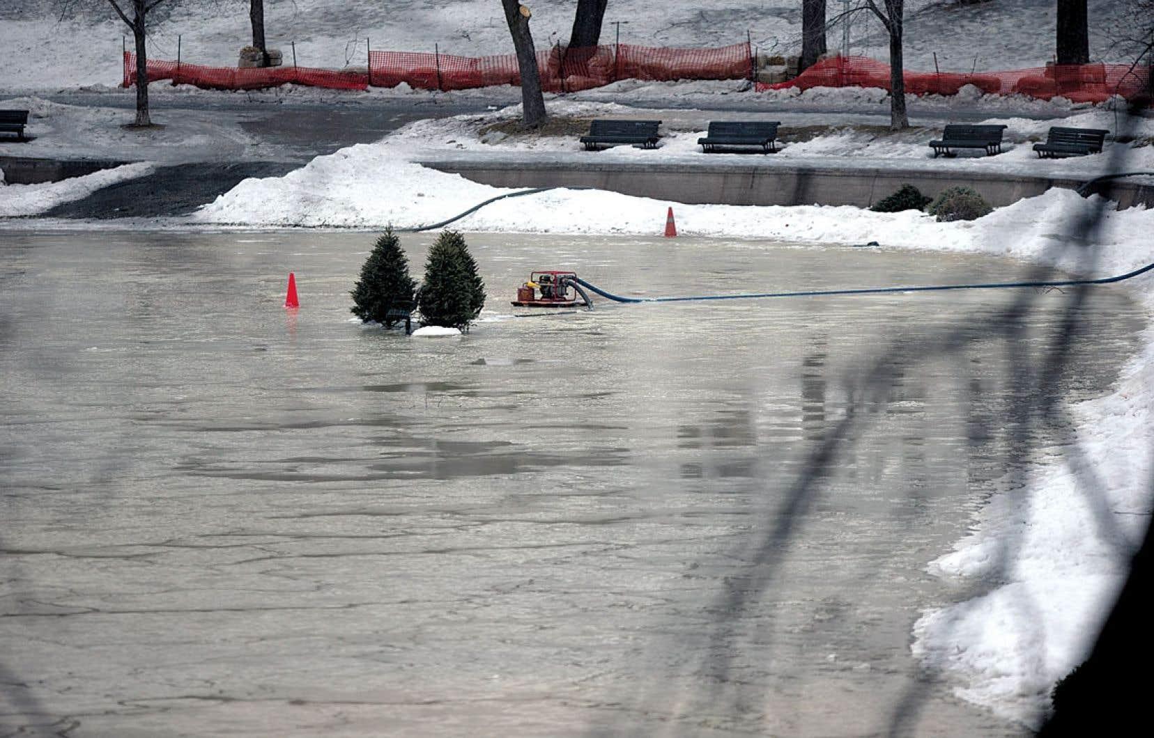 Les hivers de plus en plus doux ne facilitent pas l'aménagement et l'entretien de patinoires extérieures, comme ici au parc Lafontaine, à Montréal.