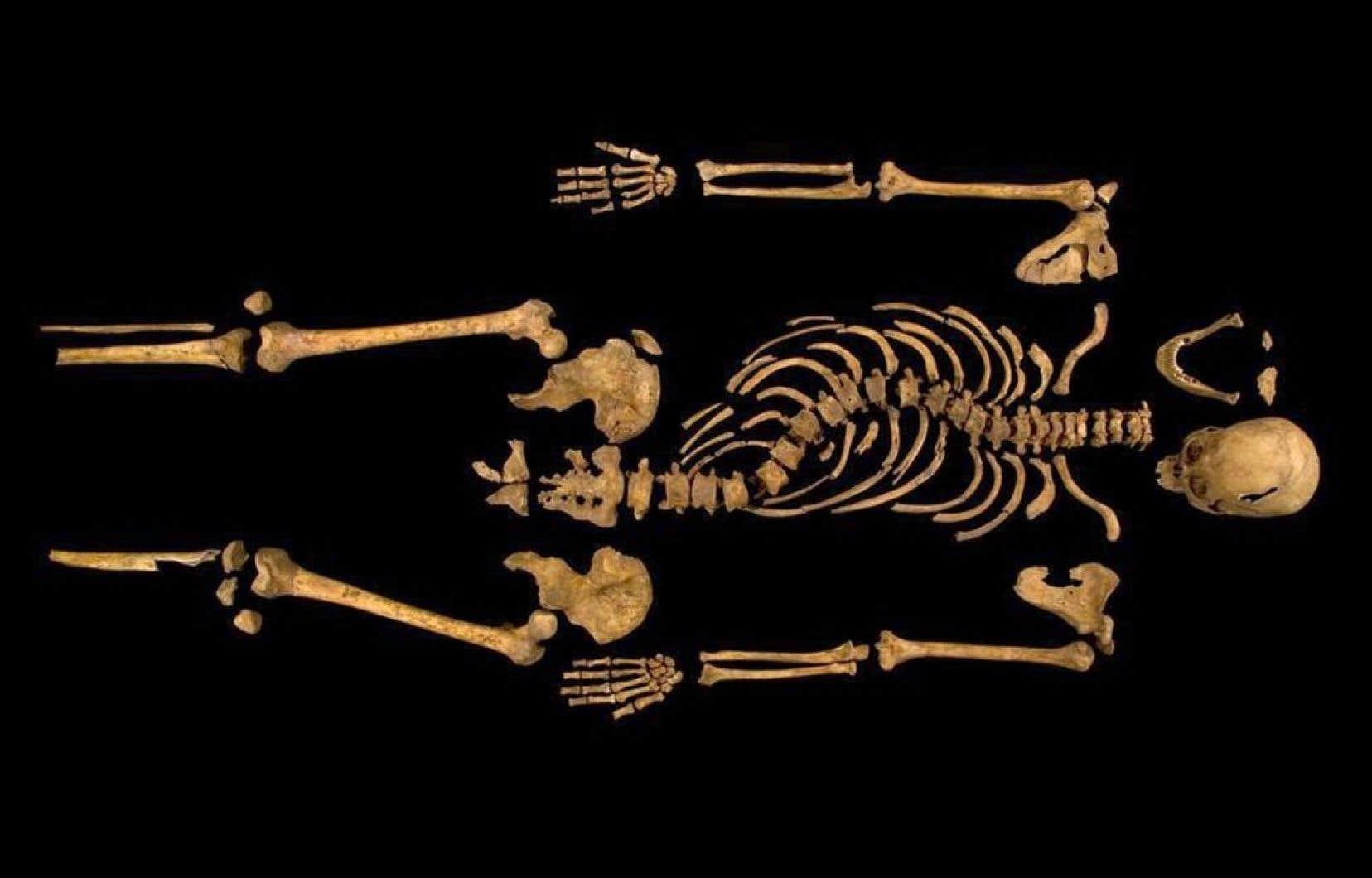 Le squelette de l'ancien roi d'Angleterre Richard III, mort il y a 500 ans, a été retrouvé l'an dernier. Ses restes ont été identifiés grâce à l'ADN d'un Canadien, qui est un lointain descendant du roi.