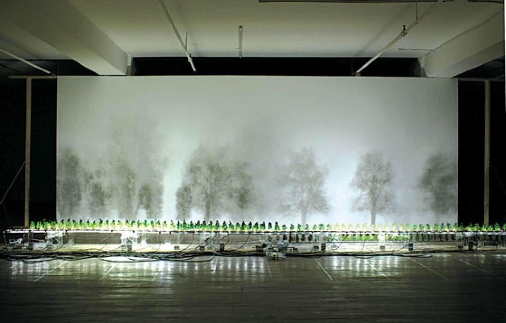Diane Morin propose avec Imbrication (machine à réduire le temps) une œuvre de grande maîtrise dont les effets sont saisissants.