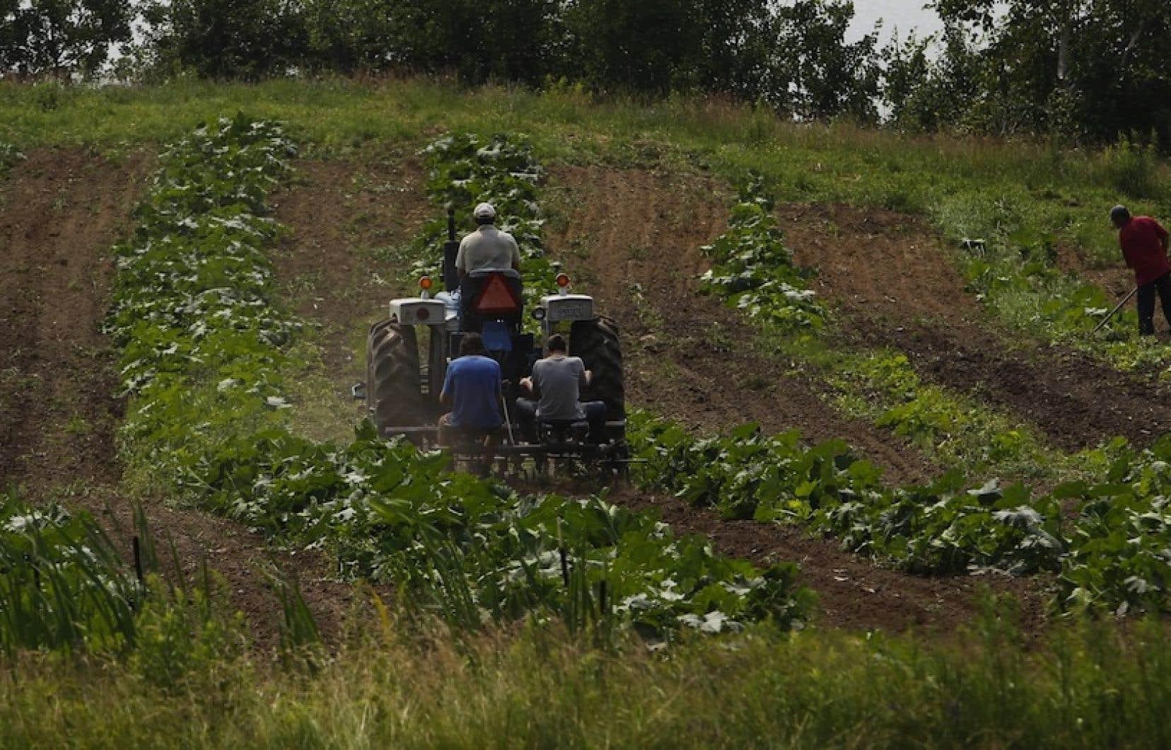 Après la culture, l'agriculture doit faire l'objet d'une protection particulière pour être hors d'atteinte des négociateurs d'accord de libre-échange, ont réitéré lundi midi les coprésidents de la Coalition pour la souveraineté alimentaire, Marcel Groleau et Jean-Paul Faniel.