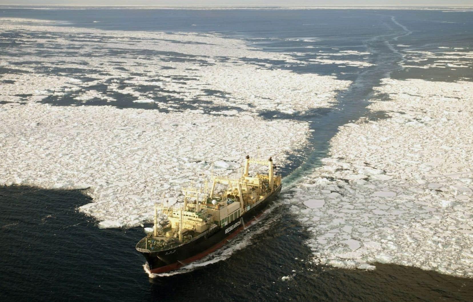 Un baleinier japonais. L'Australie veut mettre fin au programme de chasse dite «scientifique» que pratique Tokyo depuis l'instauration d'un moratoire international sur la chasse commerciale, en 1986.