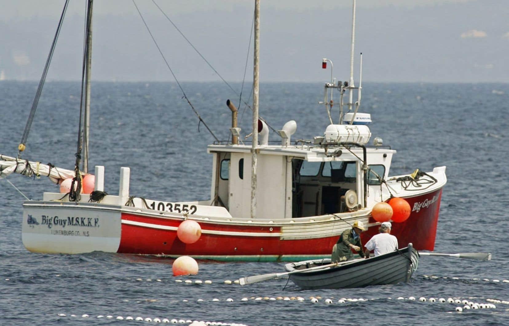 Des pêcheurs relèvent leurs filets au large de Terre-Neuve. Environ 10 % des pêcheries mondiales sont certifiées MSC.