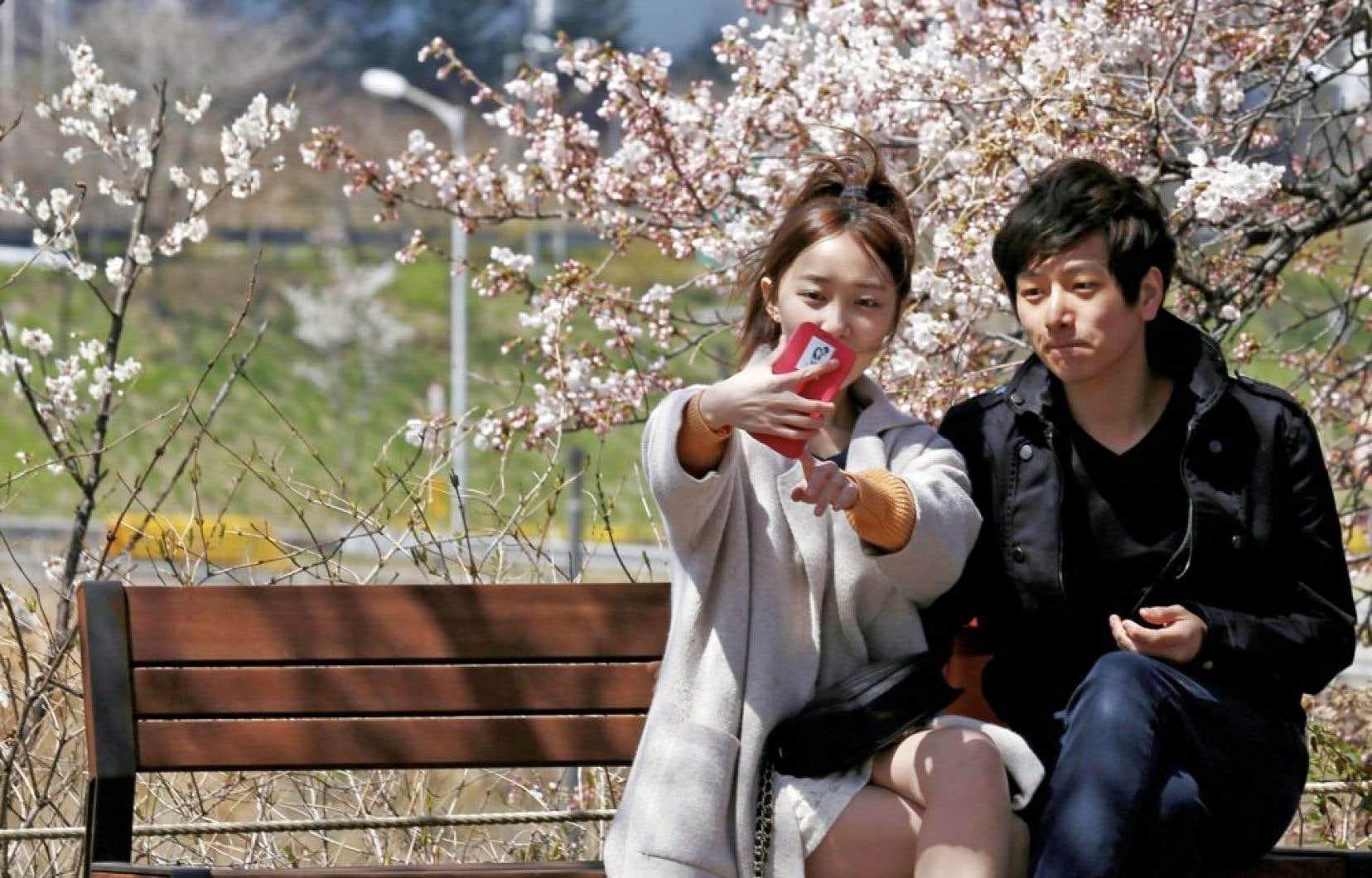 Un couple se prend en photo devant un cerisier en fleurs, à Séoul. Dans la zone démilitarisée comme dans la capitale, la vie continue pratiquement comme si de rien n'était…
