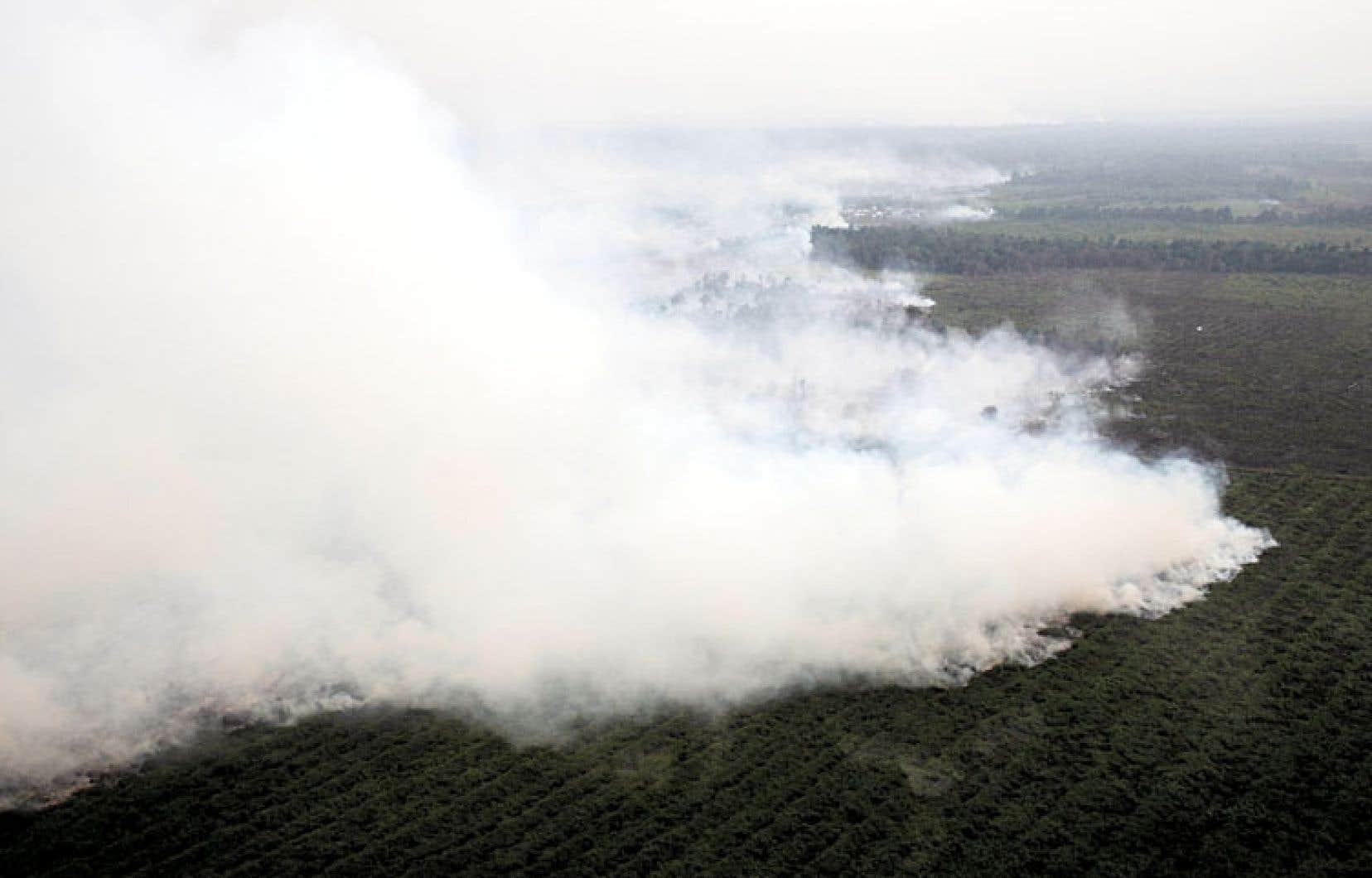 Cette fumée épaisse provient des feux de forêt allumés dans la province de Riau à Sumatra.