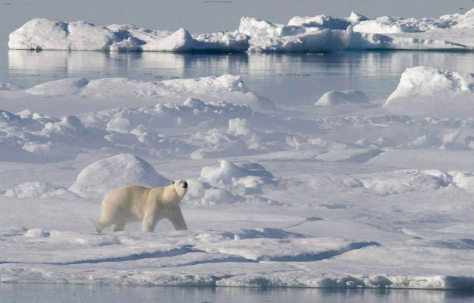 Outre les fonds marins, une étude britannique publiée le mois dernier indique que le pergélisol de toute la zone arctique pourrait commencer à dégeler de façon durable d'ici 10 à 30 ans.