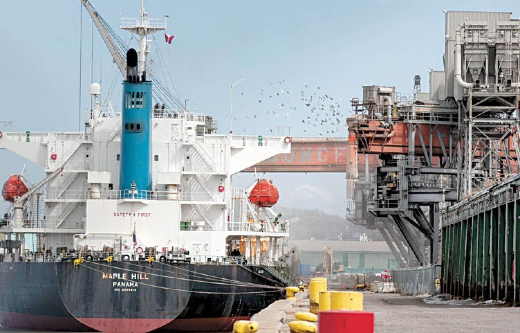 En avril 2013, le ministère de l'Environnement a déterminé que les concentrations de nickel inhabituellement élevées provenaient du port de Québec.