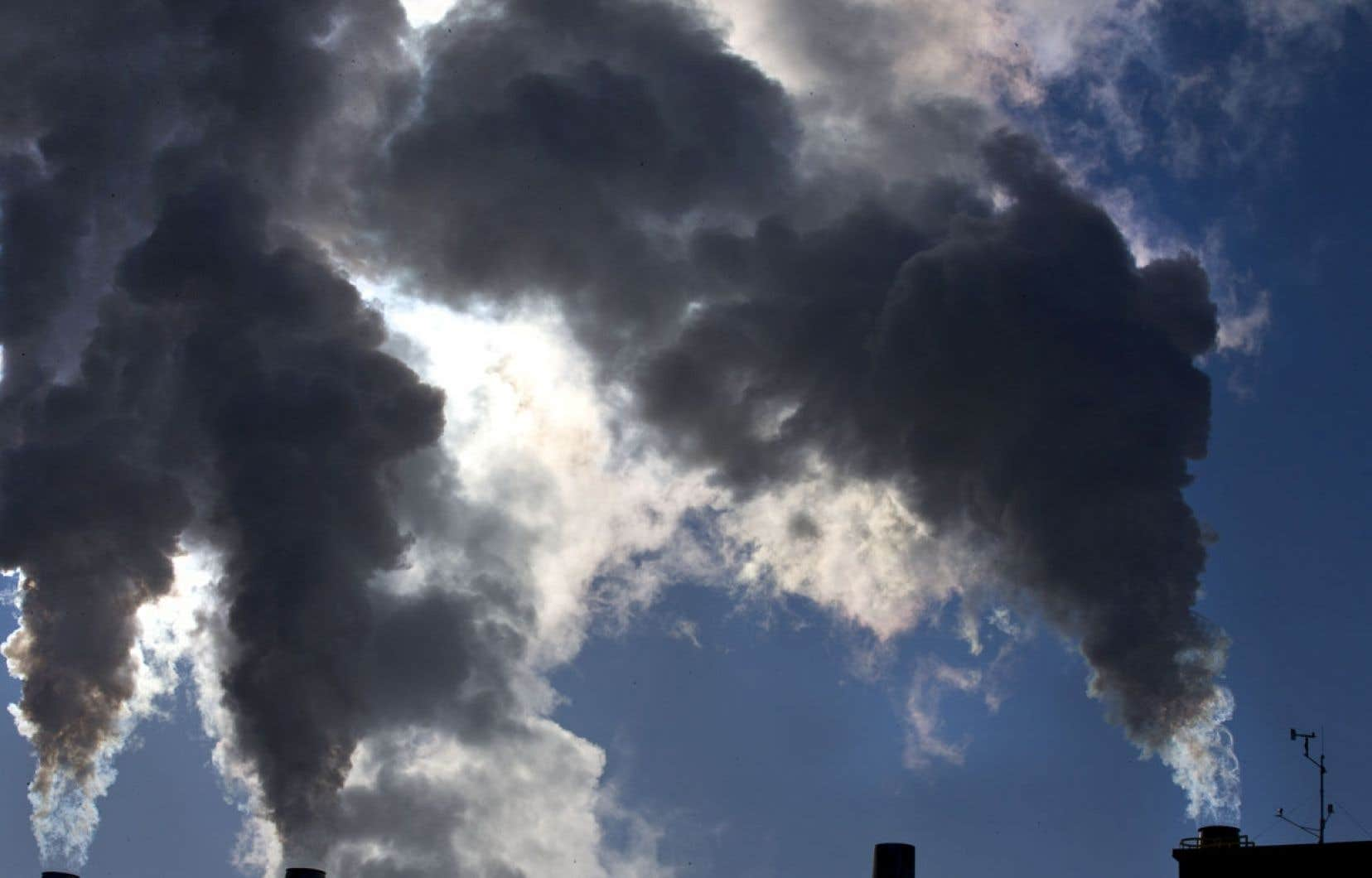 La qualité de l'air et la pollution atmosphérique peuvent être la cause de maladies respiratoires et pulmonaires et causer des réactions allergiques.