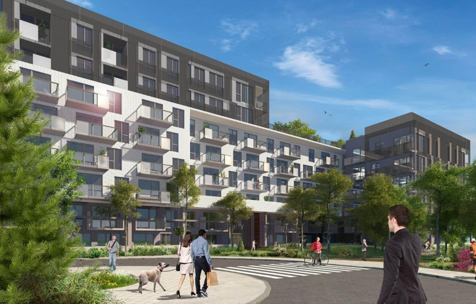 Le projet MUV condos aura une architecture classique, tandis que l'importante fenestration des logements permettra un maximum de luminosité.