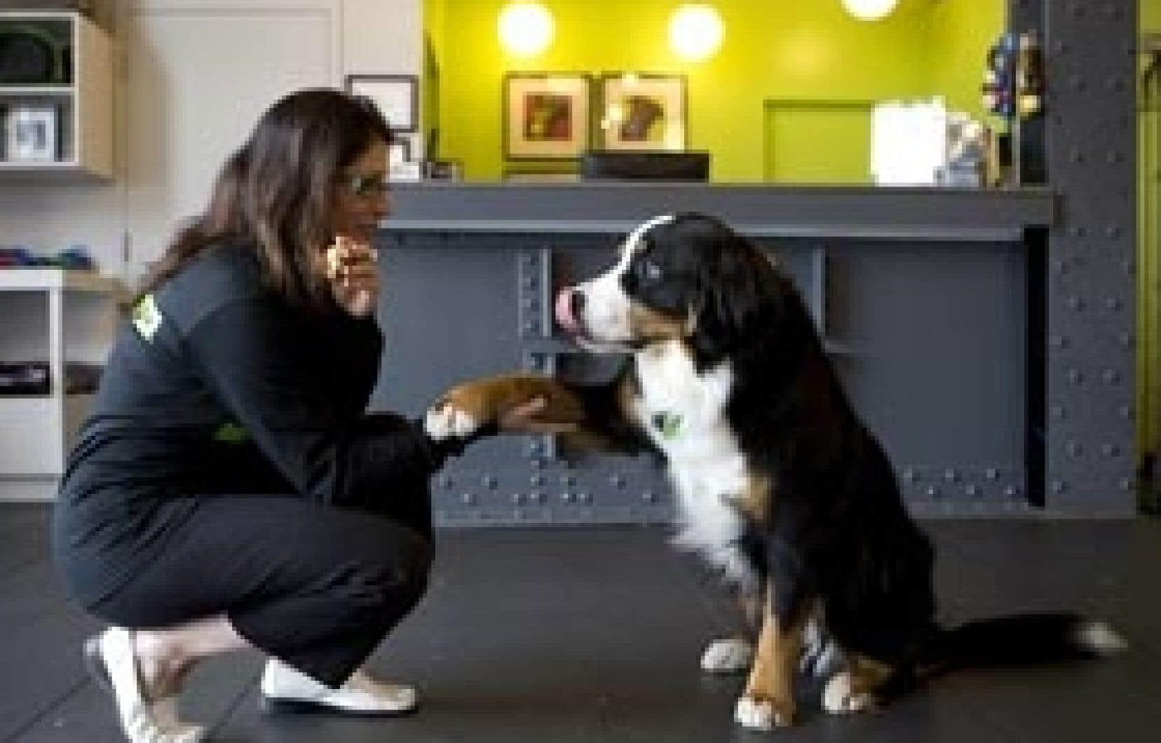 La propriétaire de l'hôtel Muzo, avec le chien Kooper.