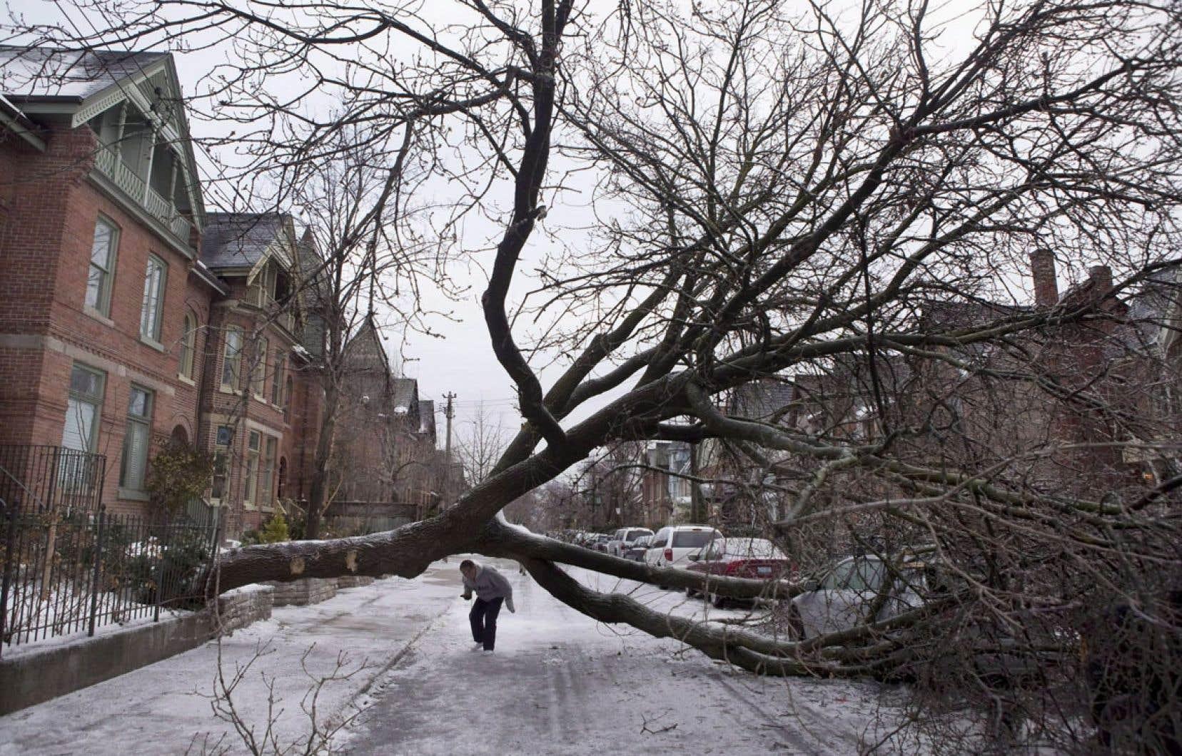 La crise du verglas l'hiver dernier à Toronto.