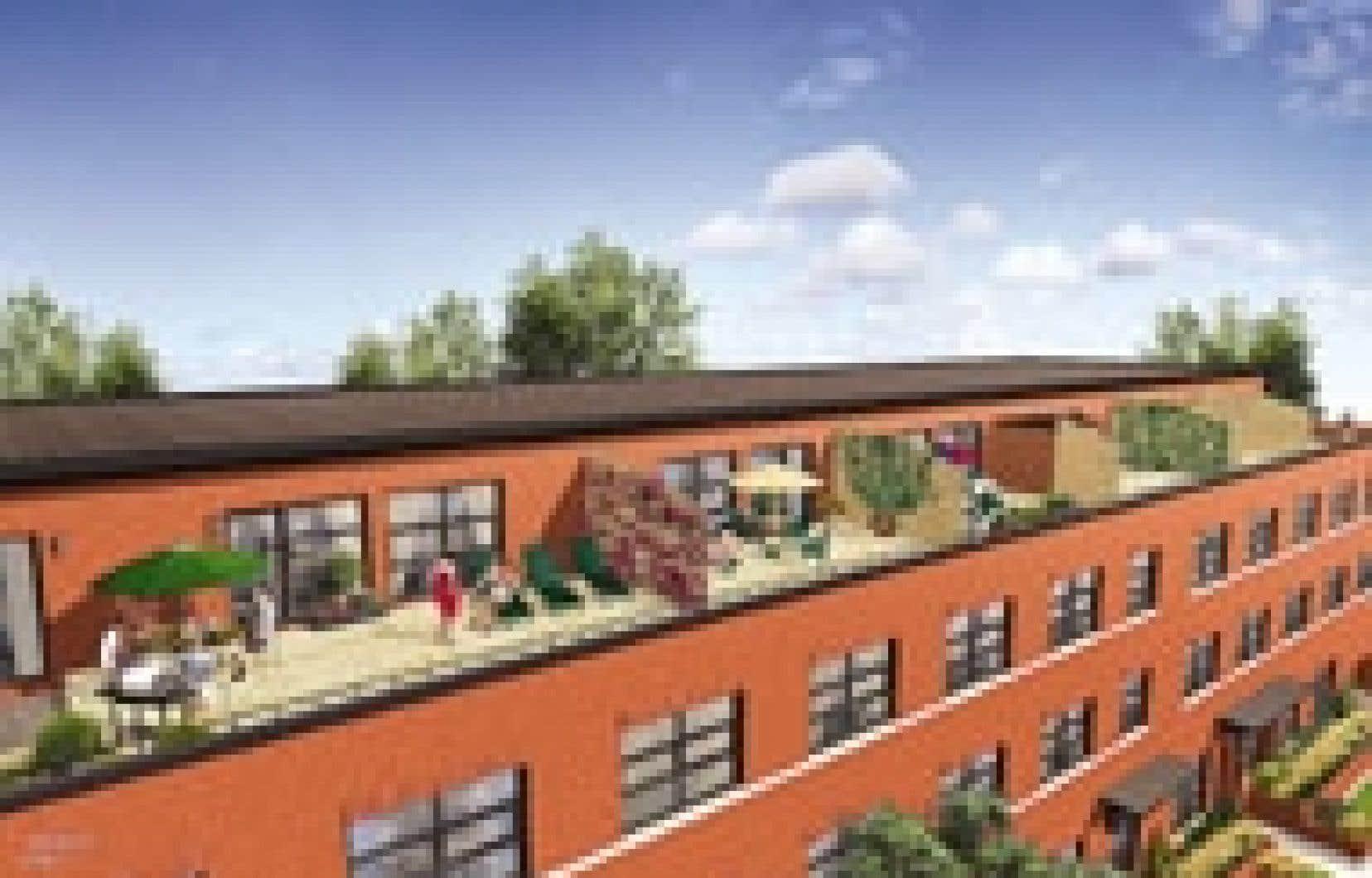 Le projet des «Lofts à la Petite-Italie», conçu par le groupe BNR, s'adresse à une clientèle de jeunes professionnels. Source: Groupe BNR