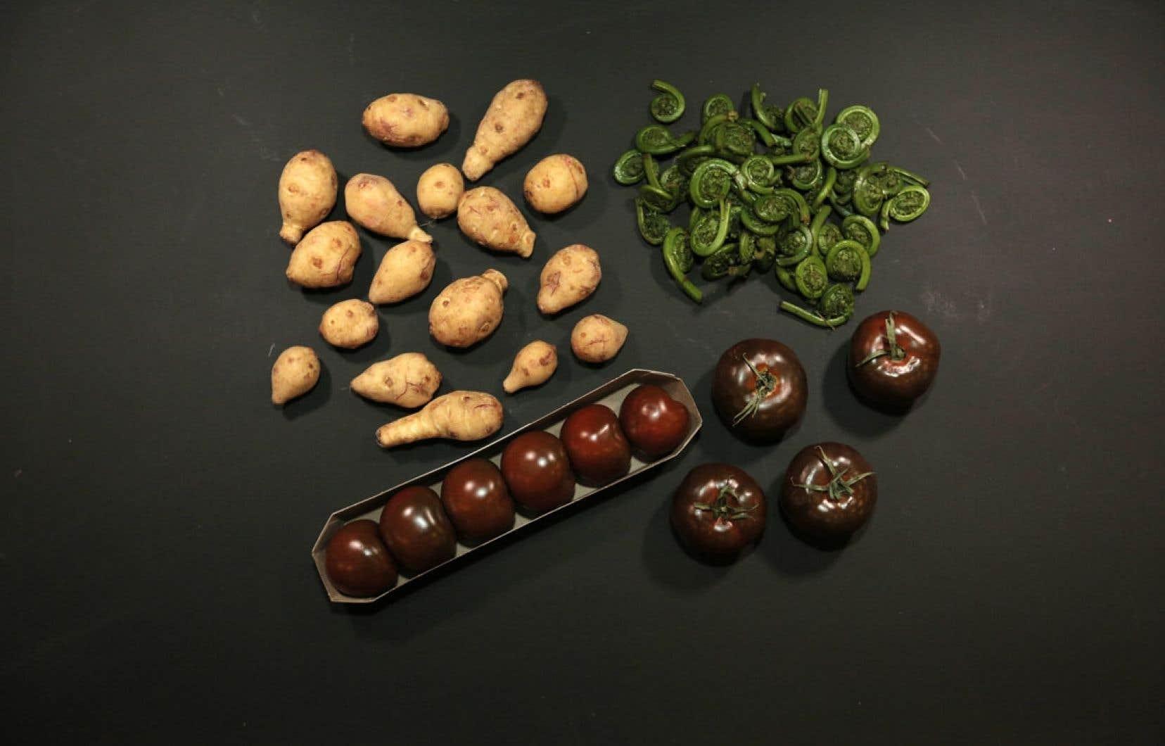 L'intérêt pour les légumes méconnus a vraiment pris de l'ampleur au cours des cinq dernières années.