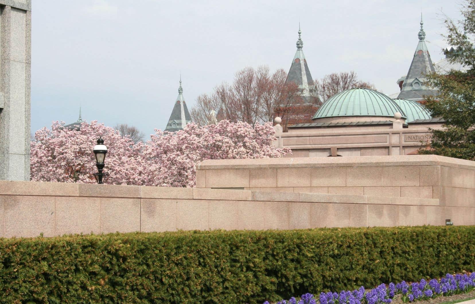Washington est belle en tout temps, mais en particulier au printemps, lorsque les cerisiers sont en fleurs, et l'été, saison verte et vaporeuse.