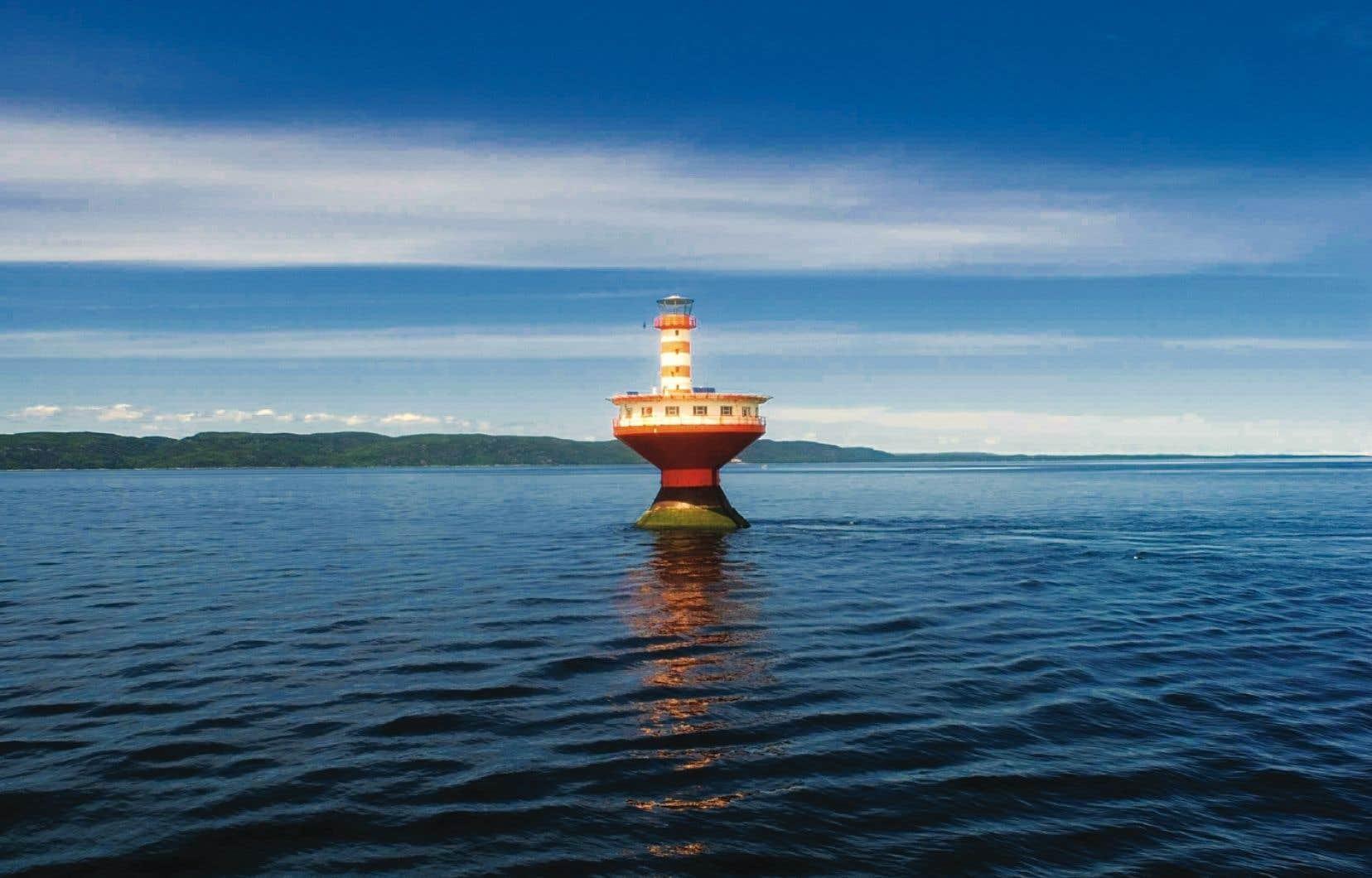 Le projet de ZPM Estuaire du Saint-Laurent, initié en 1998, permettrait la protection des mammifères marins de l'estuaire du Saint-Laurent.