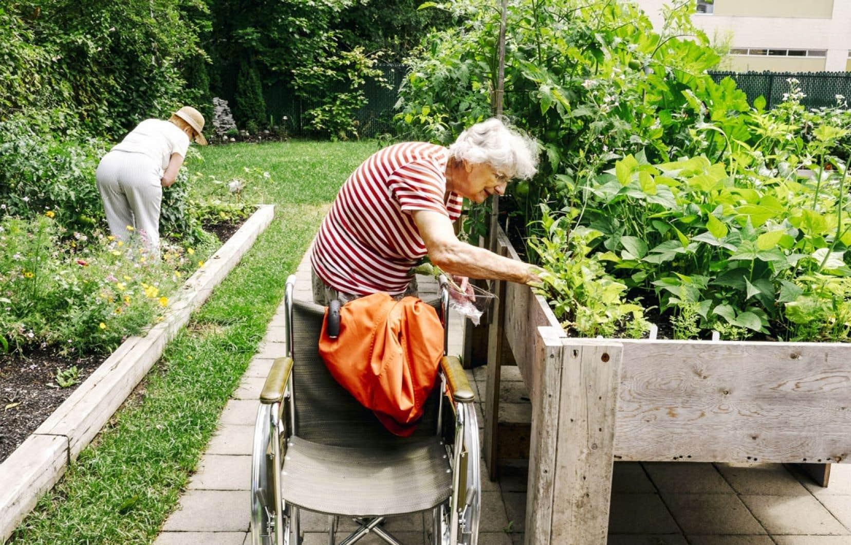 Des personnes g es au pouce vert le devoir - Table de jardin plastique vert saint paul ...
