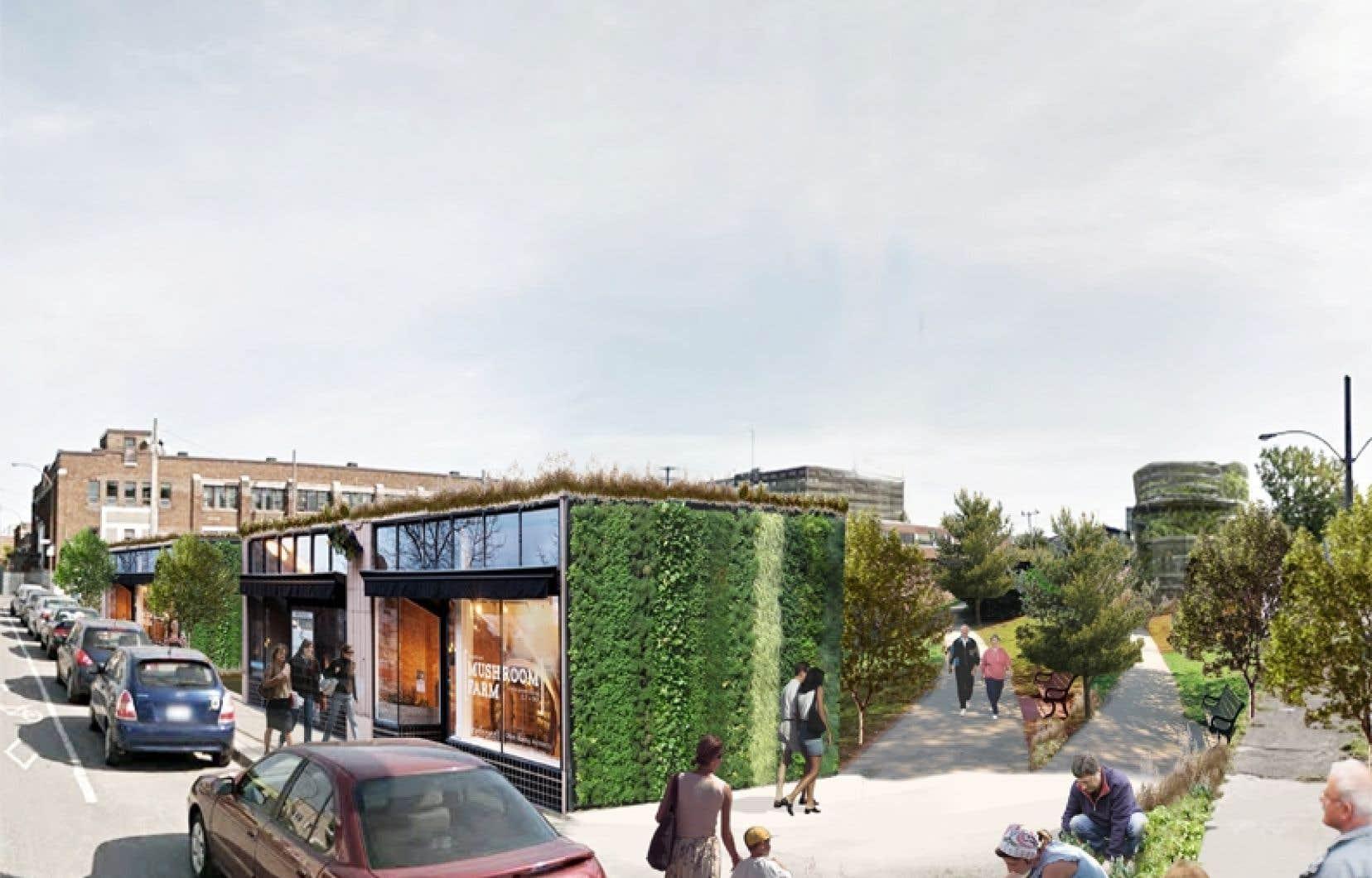 L'équipe de chercheurs derrière «Imaginons Bellechasse» compte présenter les résultats de la consultation publique à l'arrondissement.