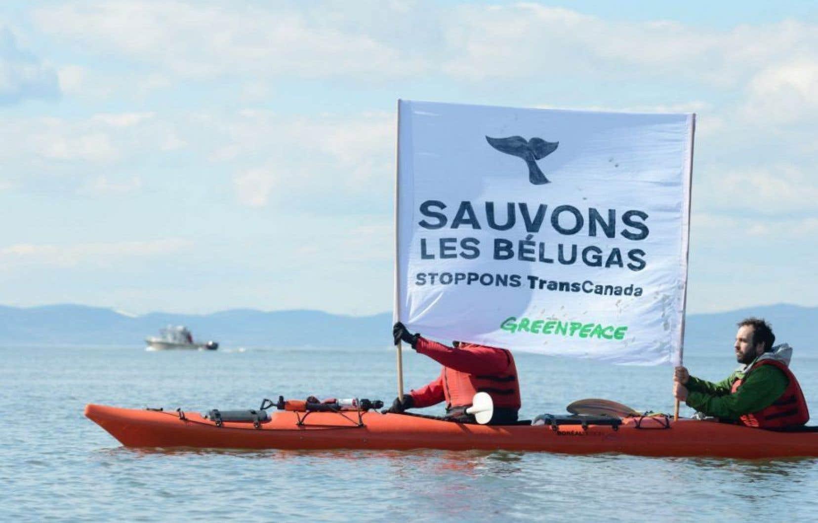 La décision de la Cour supérieure du Québec, tombée lundi après-midi, n'a pas plu aux groupes environnementalistes.
